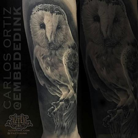 Tattoos - Black and Grey Owl - 132036