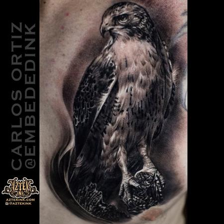 Carlos Ortiz - hawk tattoo by Carlos Ortiz