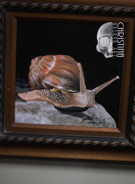 Christina Walker - Snail in oil