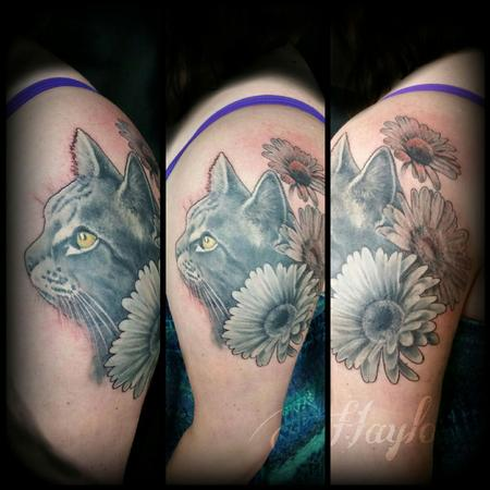 Haylo - Cat portrait with surrounding daisies in black and gray