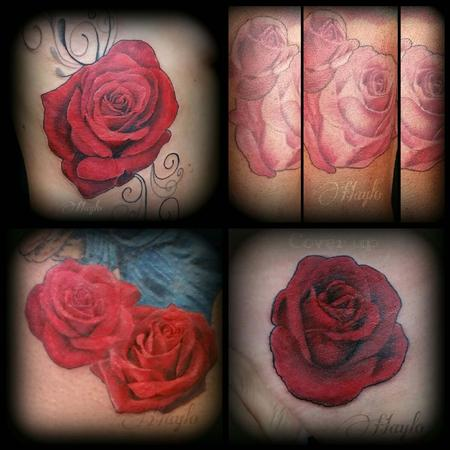 Haylo - Collaboration of Realistic style roses