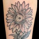 Tattoos - Sunflower - 126786