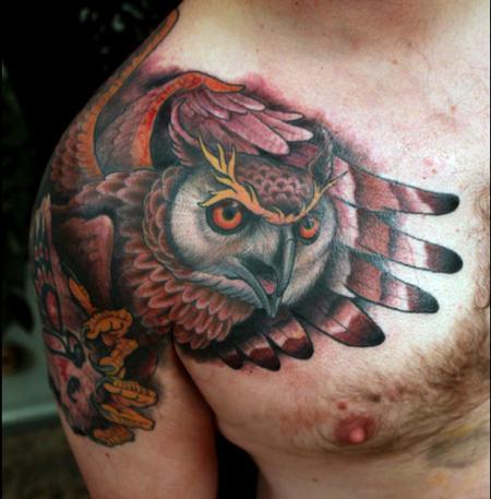 Shawn Barber - owl