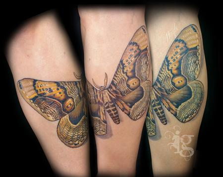 Giant Moth leg tattoo by Haylo Design Thumbnail