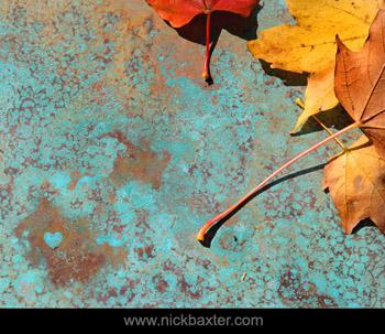 Nick Baxter - Love