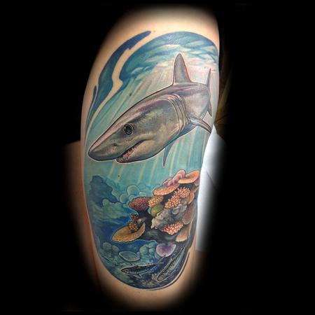 Matt Driscoll - Shark Tattoo