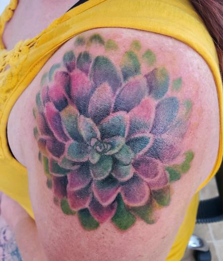 Echeveria Jules Design Thumbnail