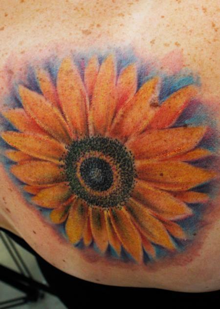 Steve Phipps - Sunflower