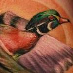 Tattoos - Wood Duck - 99947