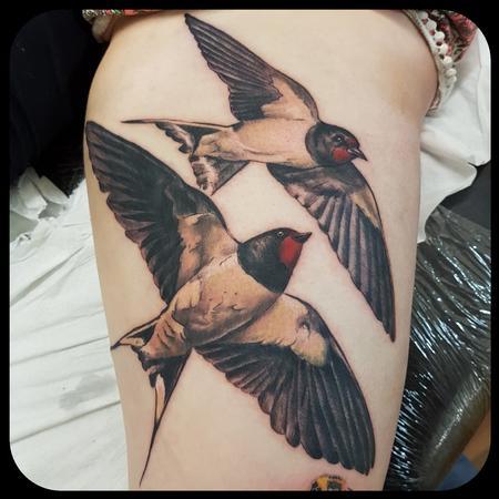 Tattoos - Swifts - 132049