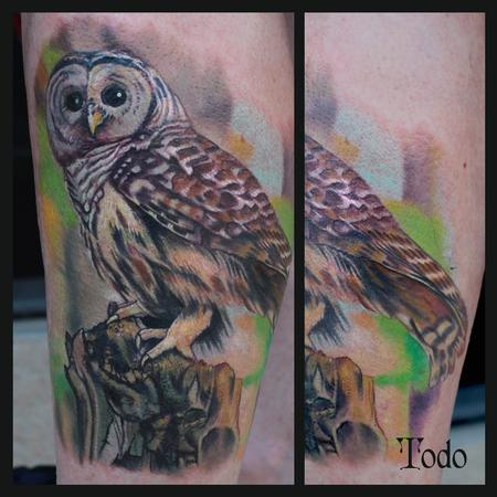 Tattoos - Barred Owl - 92158
