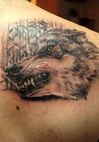Tattoos - Alex De Pase - wolf  - 29177