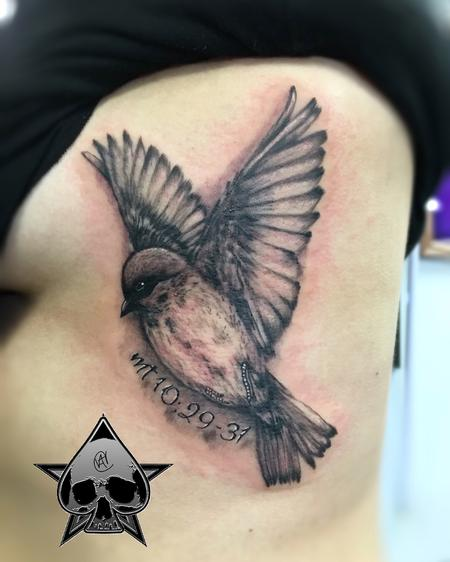 Tattoos - Song Sparrow - 116076