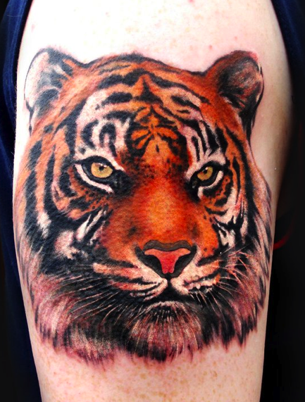 Tattoos - Tiger Tattoo - 57984