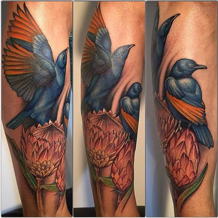 Warren Petersen - Baked Ink - Starlings and Proteas