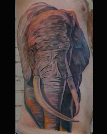 Tattoos - Elephant - 34554
