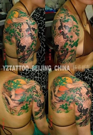 Tattoos -  - 42633