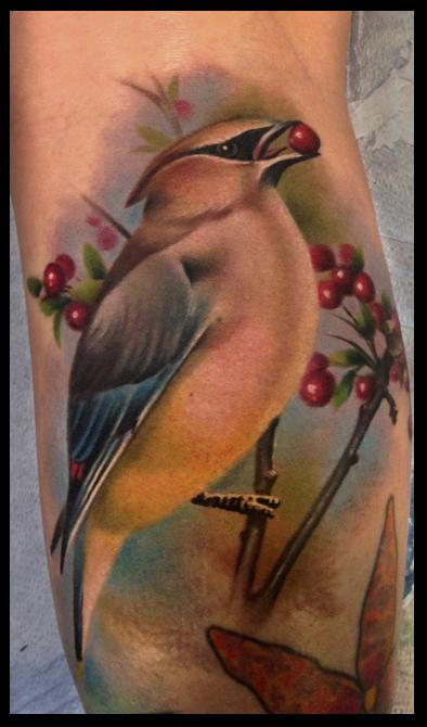 Tattoos - cedar waxwing - 78700