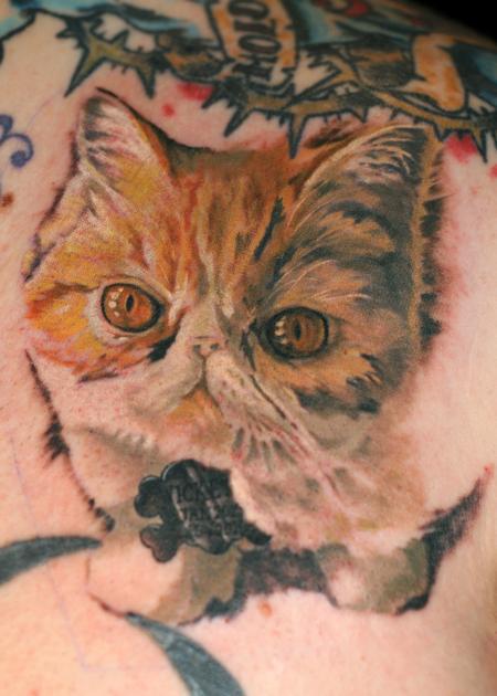 Tattoos - cat portrait tattoo - 84453