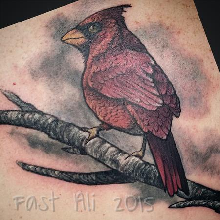 Tattoos - Rocco's Cardinal. For Dad. - 126264