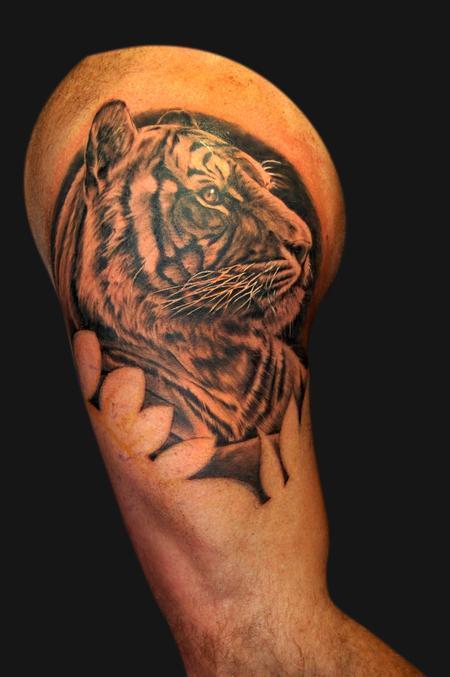 Tattoos - Tiger portrait - 102438
