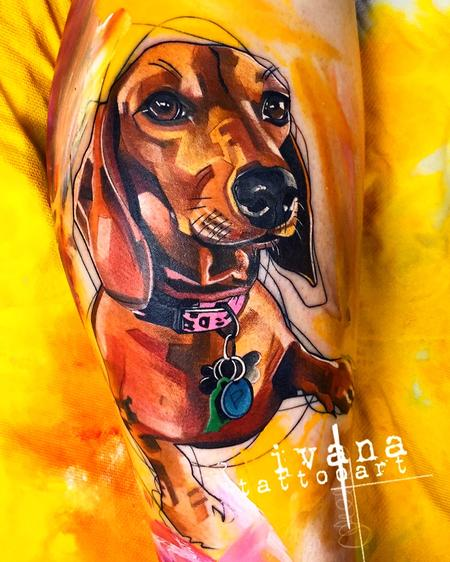 Tattoos - Dachshund Portrait - 141565
