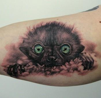 Tattoos -  - 45407