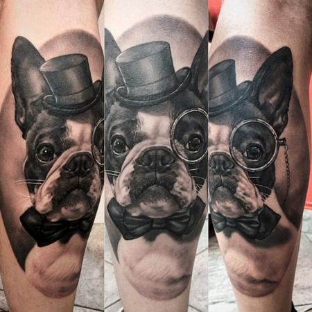Matteo Pasqualin - Boston Terrier Portrait