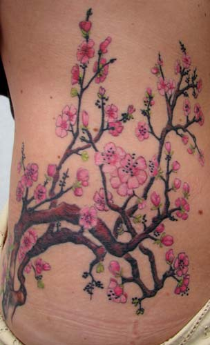 Tattoos - cherry blossom branches  - 26258