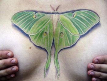 Tattoos - untitled - 25091
