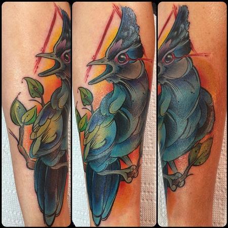 Tattoos - stellar jay - 78687