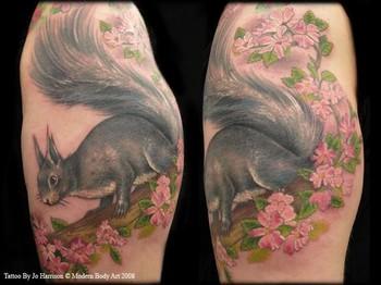 Jo Harrison - Squirrel Tattoo