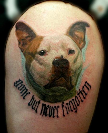 Tattoos - pitbull color portrait - 72513