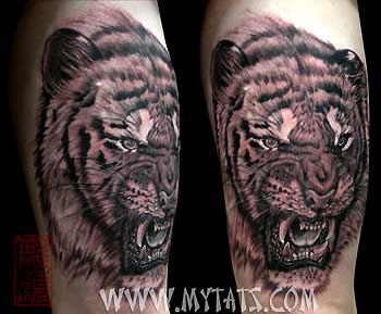 Tattoos - Black and Grey Tiger - 29293