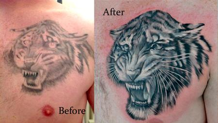 Tattoos - cover up tiger - 93439