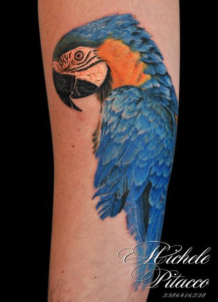 Tattoos - parrot - 119990