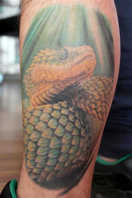 Tattoos - michele@offthemaptattoo.com, snake, serpente - 89336