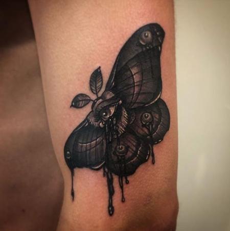 Moth with Eye