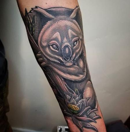 Tattoos - Cody Cook Koala - 139613