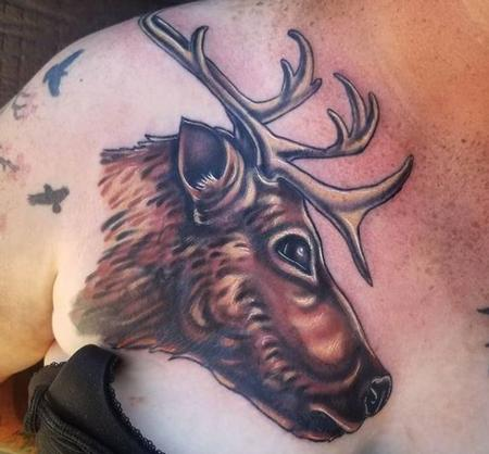 Cody Cook Caribou