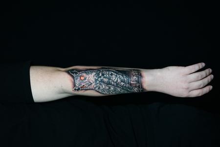 Tattoos - Sadie Gabriella Owl - 142709