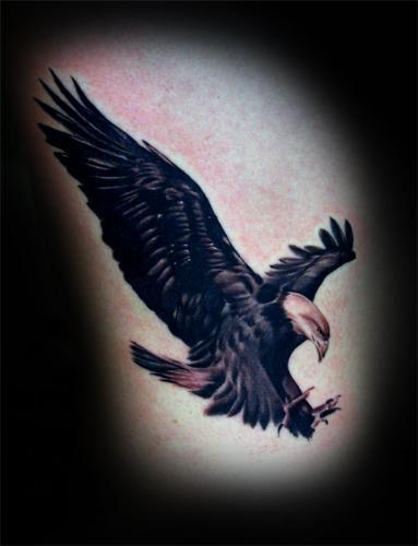Tattoos - Eagle. - 54453