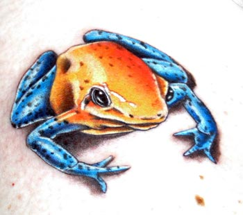 Tattoos - poison dart frog - 22144