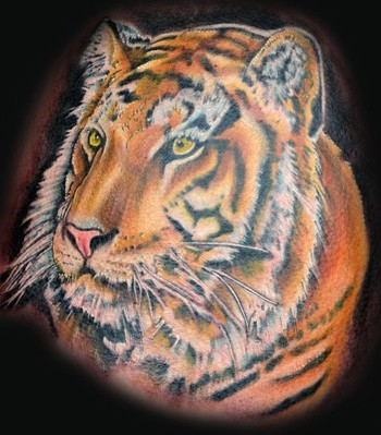 Tattoos - Tiger - 47679