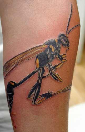 Tattoos - wasp - 21981