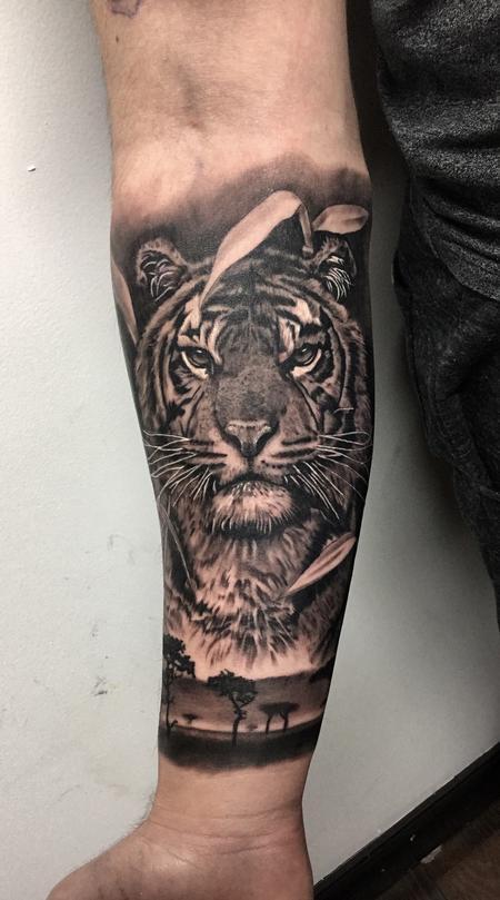 Felipe Amaya - Tiger