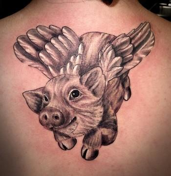 Daniel Rosini - Flying Pig