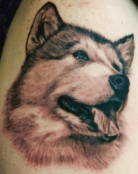 Tattoos - Malamute - 79207
