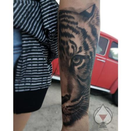 Tattoos - Black and grey Tiger - 132002