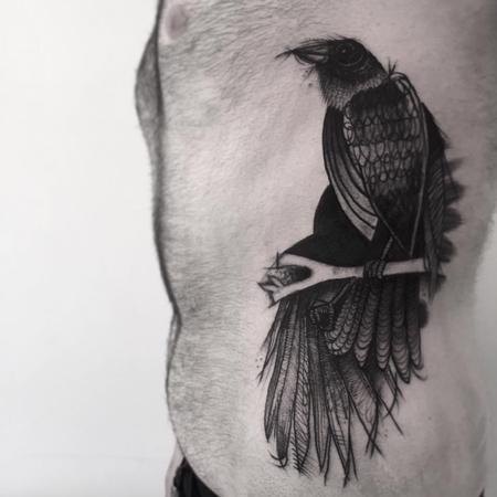 Tattoos - crow sketches - 128008